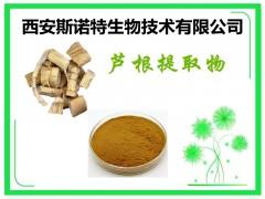 芦根提取物 芦根粉 斯诺特生物 供应中