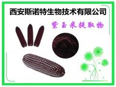 紫玉米粉 紫玉米萃取粉 五谷杂粮粉 生产厂家