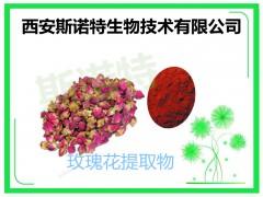 玫瑰花粉 玫瑰花速溶粉 玫瑰花原料提取
