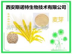麦芽纤维粉 水溶性粉 精细粉末 快速发货