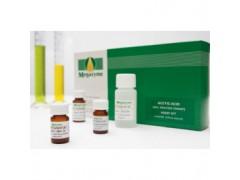 葡聚糖检测试剂盒--国外进口