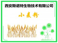 小麦膳食纤维粉 小麦熟粉 五谷杂粮粉 包邮