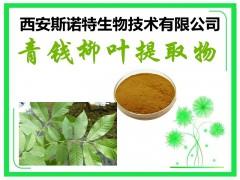 【新资源食品】青钱柳叶提取物 原料提取 包邮