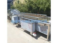 扁豆清洗机,蔬菜加工设备