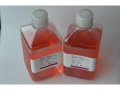 CELL-WISE 293无血清培养基生产厂家价格
