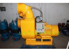 ZKZX带真空辅助系统自吸泵