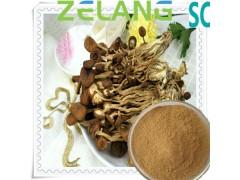 代加工茶树菇提取物,代加工茶树菇固体饮料,压片糖果