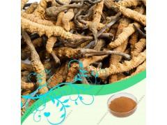 代加工虫草提取物,虫草多糖10~40%
