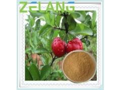 代加工针叶樱桃提取物,维生素C,10~25%