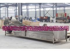 CQX型电动豆芽清洗机,专业中草药清洗机