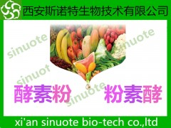 复合水果酵素粉 水果酵素粉 酵素粉 可试样
