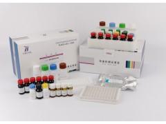 氯霉素酶免定量检测试剂盒