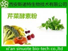 芹菜酵素粉 芹菜粉 原料萃取粉 现货供应