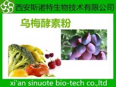 乌梅酵素粉 乌梅粉 酵素粉 原料萃取