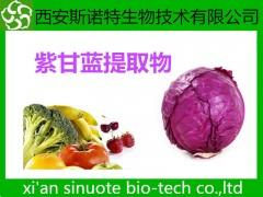 紫甘蓝酵素粉  紫甘蓝粉 原料萃取粉 包邮