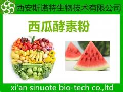西瓜酵素粉  原料萃取粉 三原厂家 可试样