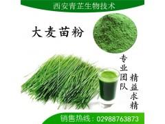 大麦苗提取物/大麦苗粉/大麦苗浓缩粉