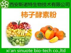 柿子酵素粉 酵素粉 柿子原料萃取粉 包邮