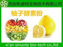 柚子酵素粉 酵素粉 原料萃取粉 供应中