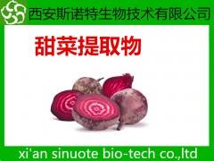 甜菜根粉 糖萝卜粉 蔬菜粉 原料提取