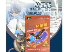 信宏大号粘鼠板超强力大老鼠贴驱鼠灭鼠器夹子老鼠笼家用捕鼠工具