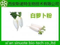 白萝卜粉 萝卜粉 原料萃取 斯诺特生物