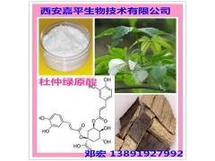 杜仲提取物 20-98%绿原酸