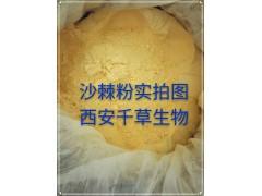 沙棘提取物药食同源 厂家生产动植物提取物定做醋柳浓缩浸膏