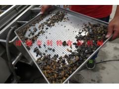 葡萄干加工设备 葡萄干清洗去石加工 葡萄干清洗流水线