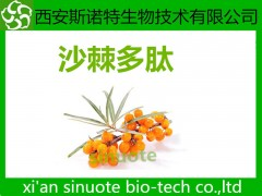 沙棘多肽 沙棘提取物 含量提取物 供应中