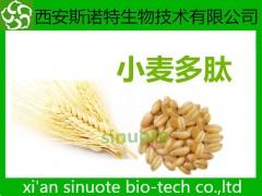 小麦多肽 小麦低聚肽 小麦提取物 供应中