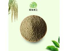 农家自产稀有养胃补气黑小米