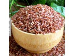 东北农家特产健康粗粮红米