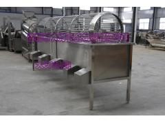 全304钢冬枣筛选机,精品胡萝卜分级机