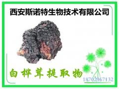 白桦茸多糖 70% 原料提取 白桦茸提取物