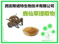 鹿仙草提取物 鹿仙草粉 提取物 现货供应