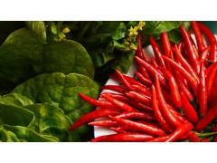ELISA方法对食品中过敏源的检测