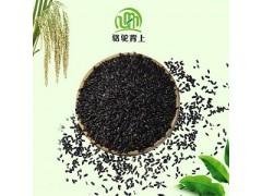 健康养生粗粮有机黑香米
