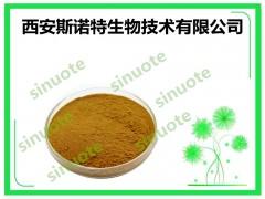 米油粉 米油提取物 提取物 斯诺特生物