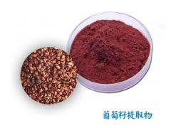 葡萄籽提取物 原花青素OPC  葡萄籽粉【宿州金能】