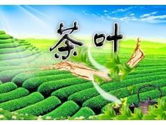 各类茶叶农残检测