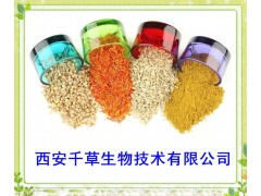 酸枣仁提取物药食同源 厂家生产纯天然提取物定做浓缩纯液