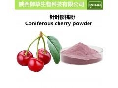纯天然针叶樱桃粉 浓缩樱桃汁粉 天然Vc 品质保证