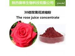 纯天然高浓度玫瑰花果粉 可制作各种玫瑰食品及护肤品 玫瑰果粉