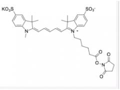cy5水溶荧光染料 Cyanine5.5 NHS ester