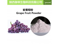 紫葡萄粉 天然紫葡萄汁浓缩粉 葡萄果粉 厂家直销品质保证