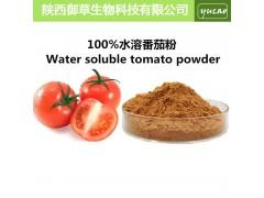 番茄粉 纯天然西红柿汁粉无添加 富含番茄红素 番茄汁粉