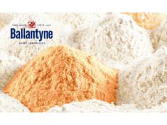 厚宽食品 百伦泰 芝士粉/马卡斯普尼/酸奶粉