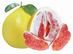 红西柚浓缩汁