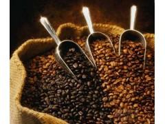 咖啡豆报关公司